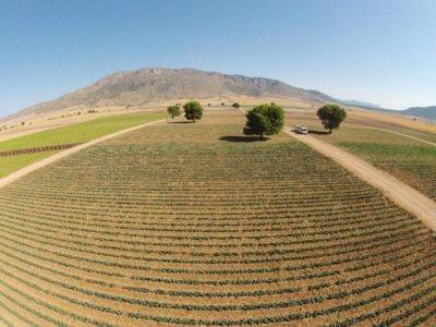 Agromontes-campos-1