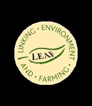 2-Leaf-Agromontes-certificado-calidad